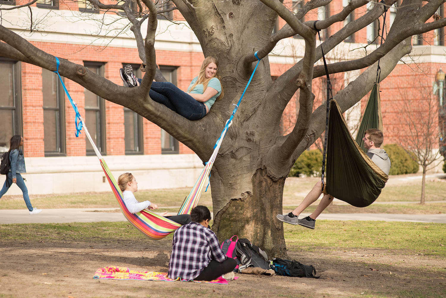 The Quad: located in the middle of campus, it is the perfect place to relax between classes