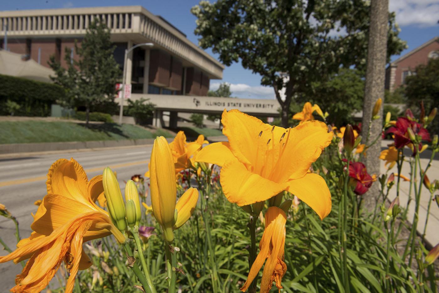 ISU campus flowers