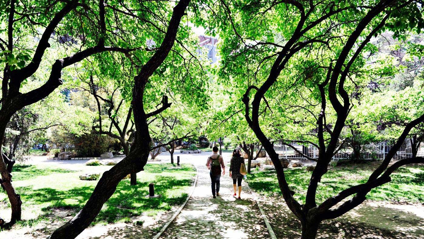 Nankai University campus grounds