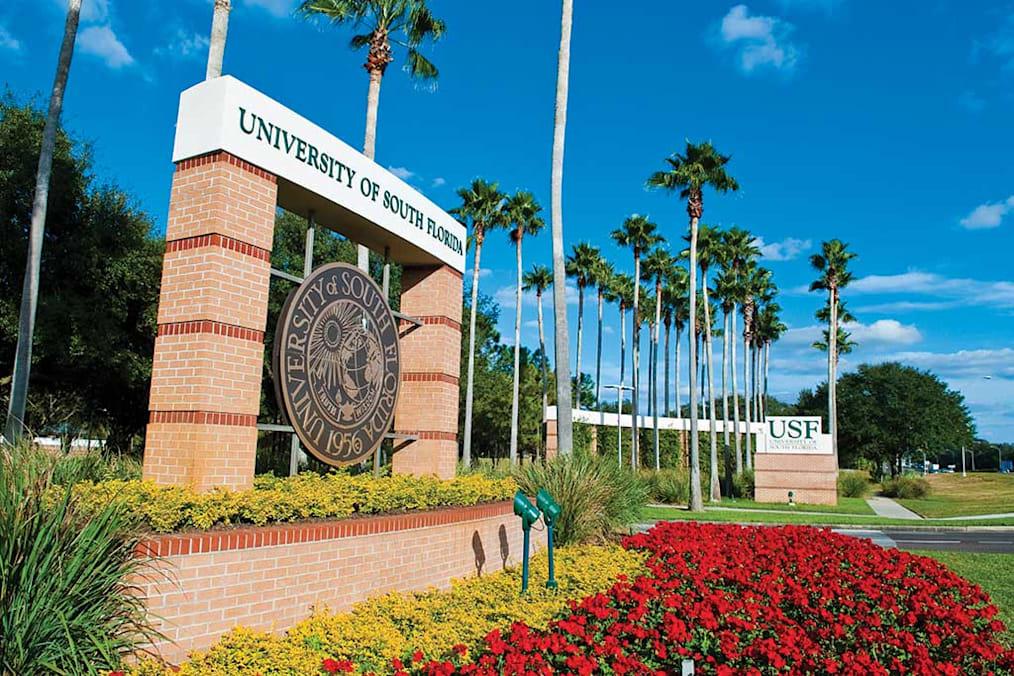 تقع جامعة جنوب فلوريدا على بعد 10 أميال شمال شرق وسط مدينة تامبا
